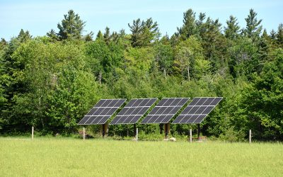 Belchertown Stands to Gain $6M from Proposed Solar Farms