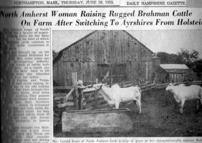 Sarah Cowls Jones with Brahman cows