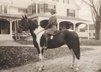 sarah cowls horse 134