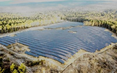 New 30ac Shutesbury Solar Field in the Paul C Jones Working Forest